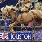 Rodeo Houston 2021