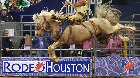 Rodeo Houston 2021